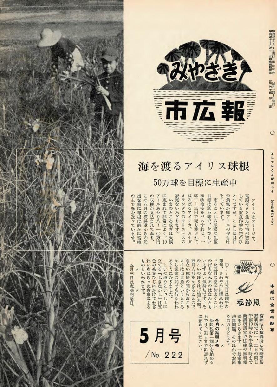 みやざき市広報 222号 1962年5月号の表紙画像